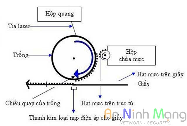 cau-tao_nguyen-ly-hoat-dong-cua-may-in-laser_7
